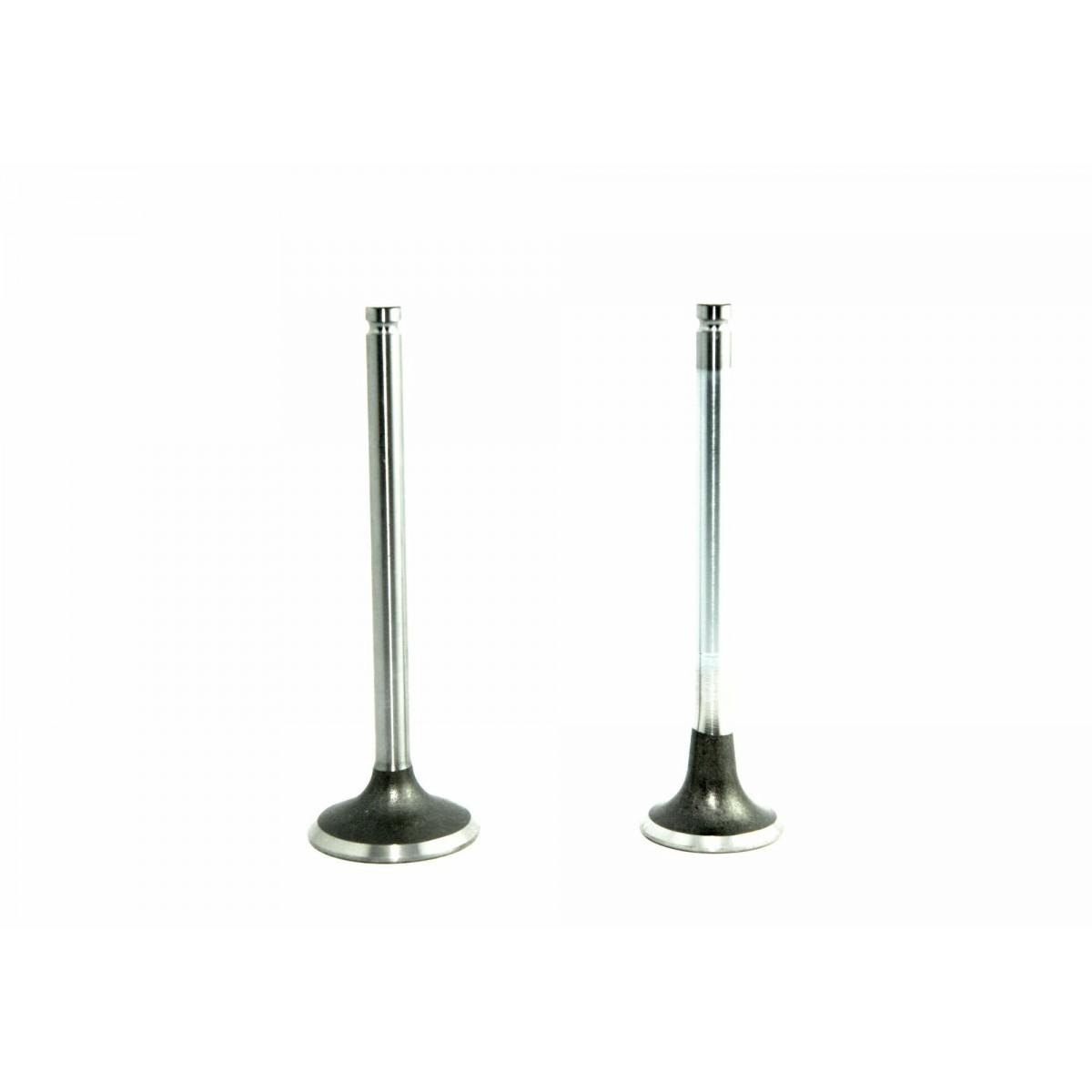 Inlet-exhaust valve ISEKI